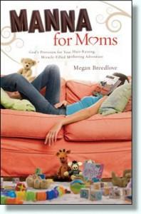 Manna for Moms Book
