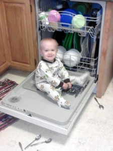 Timmy on Dishwasher